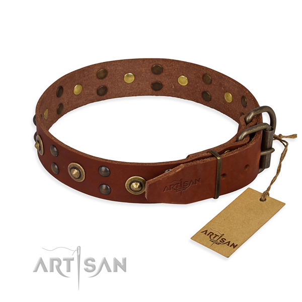 Reliable buckle on genuine leather collar for your lovely dog