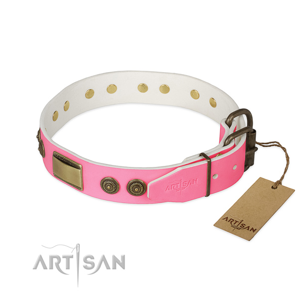 Rust-proof embellishments on basic training dog collar