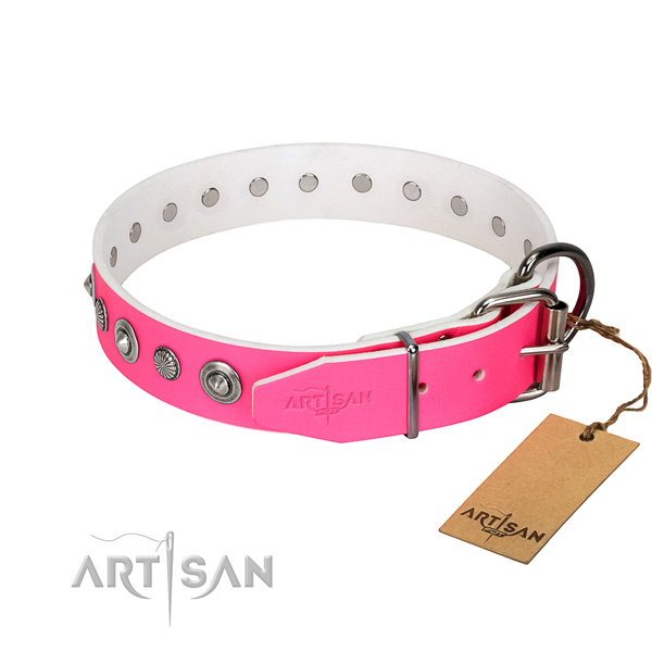 Finest quality natural leather dog collar with stylish embellishments