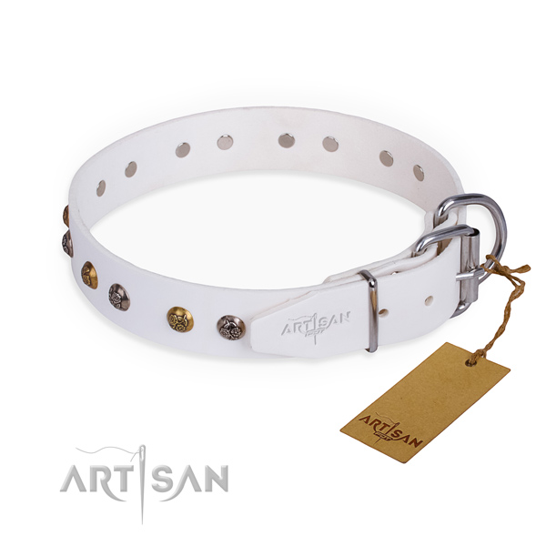 Natural leather dog collar with unique strong decorations