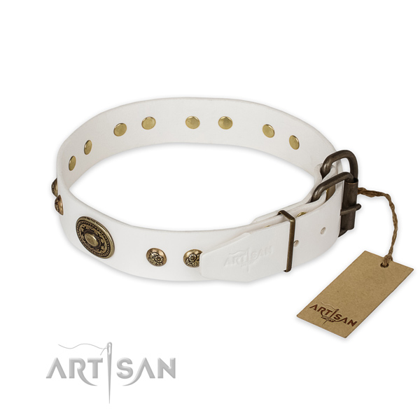 Corrosion proof traditional buckle on full grain natural leather collar for daily walking your doggie