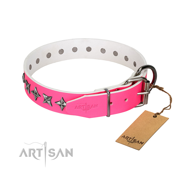 Durable full grain leather dog collar with significant embellishments
