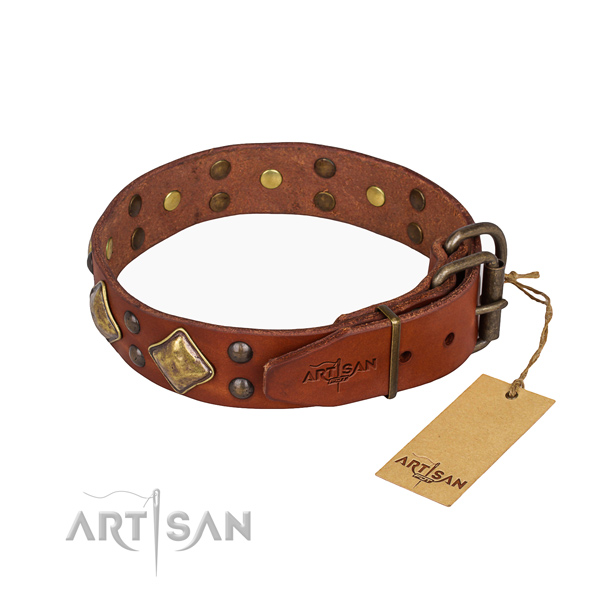 Leather dog collar with exquisite corrosion proof studs