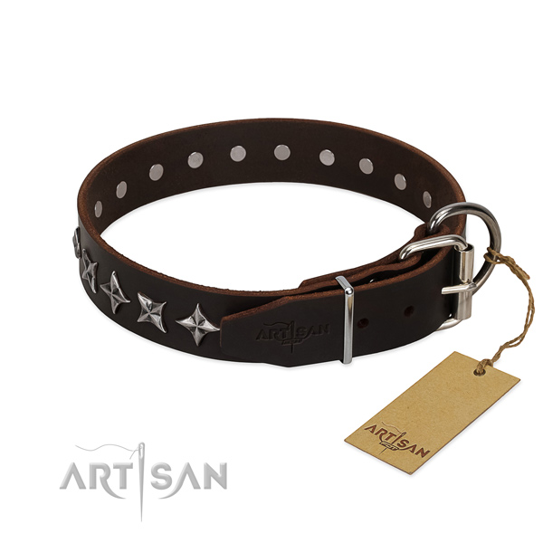 Everyday use adorned dog collar of finest quality full grain leather