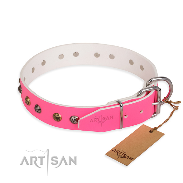 Natural leather dog collar with trendy reliable embellishments