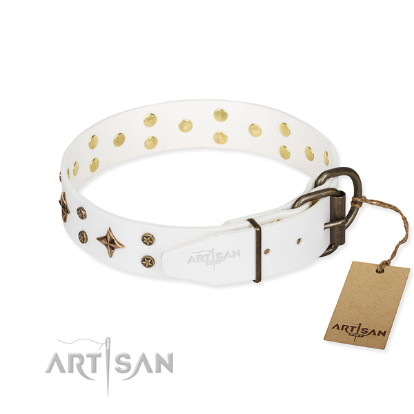 Daily use decorated dog collar of quality leather