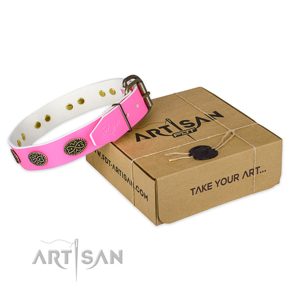 Corrosion proof studs on dog collar for stylish walking