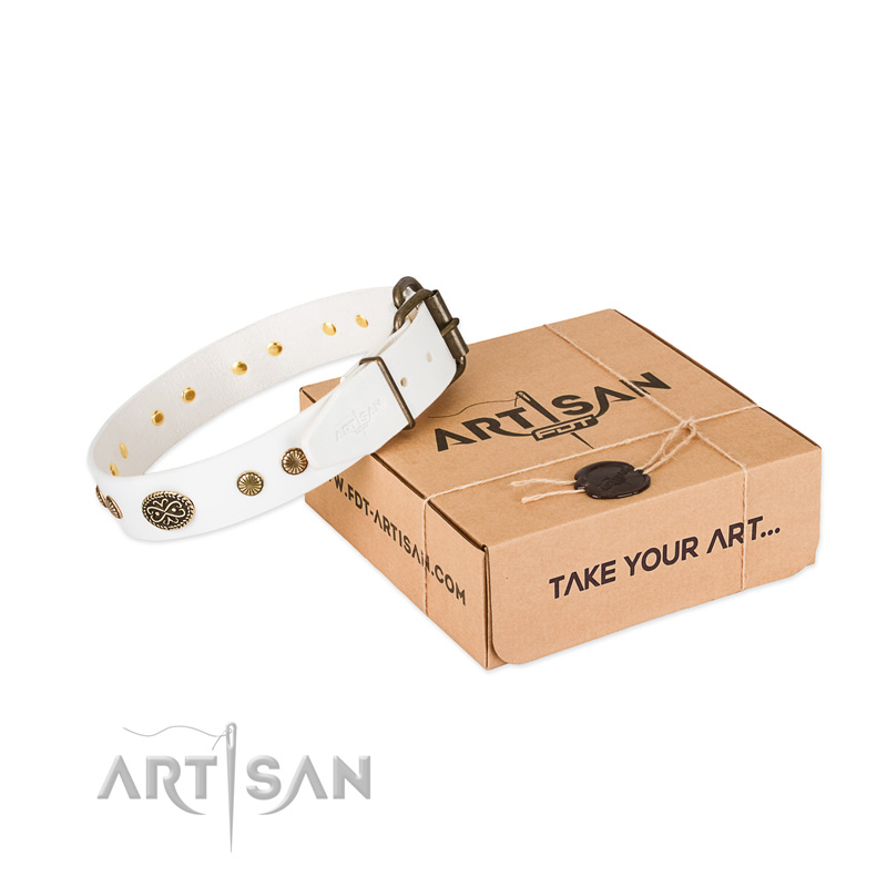 Corrosion proof decorations on natural leather dog collar for your four-legged friend