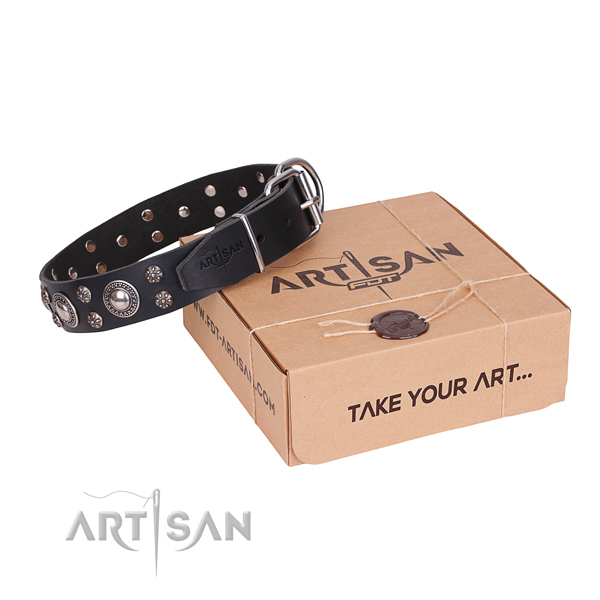 Easy wearing dog collar of quality full grain leather with studs