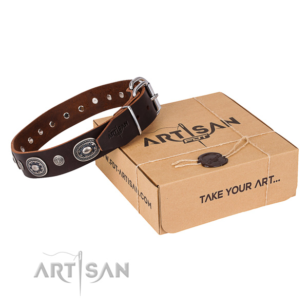High quality full grain leather dog collar handcrafted for everyday walking