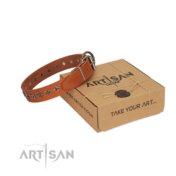 Top quality full grain natural leather dog collar with extraordinary studs