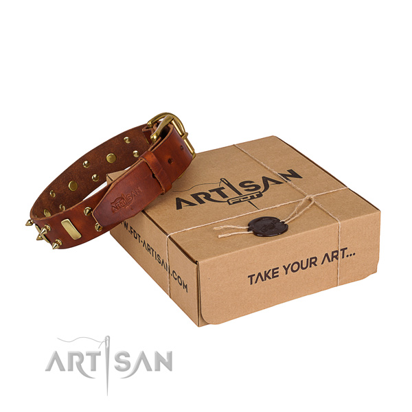 Basic training dog collar of strong full grain leather with adornments