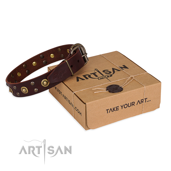 Durable traditional buckle on full grain leather collar for your beautiful dog
