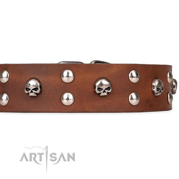 Daily walking embellished dog collar of durable full grain genuine leather