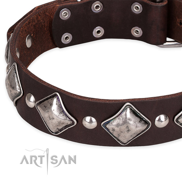 Daily walking decorated dog collar of fine quality natural leather
