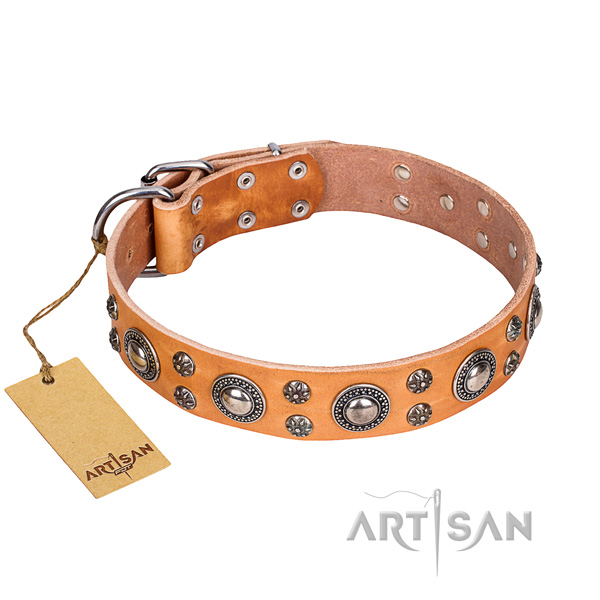 Handy use dog collar of fine quality genuine leather with decorations