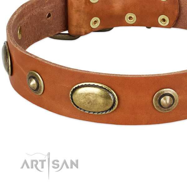 Corrosion resistant hardware on full grain natural leather dog collar for your doggie
