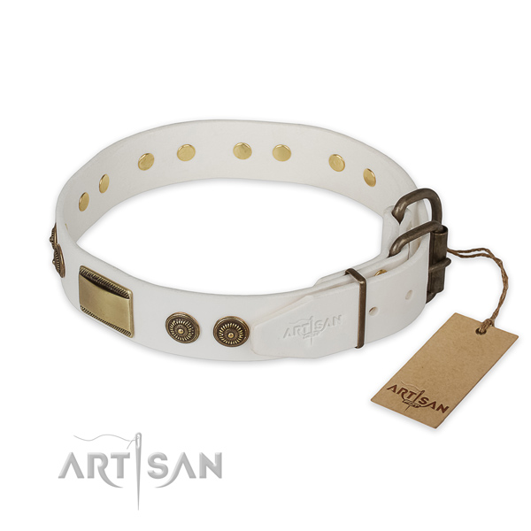 Rust-proof traditional buckle on leather collar for fancy walking your doggie