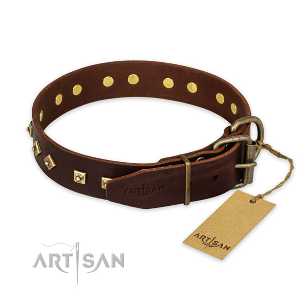 Corrosion proof traditional buckle on leather collar for walking your doggie