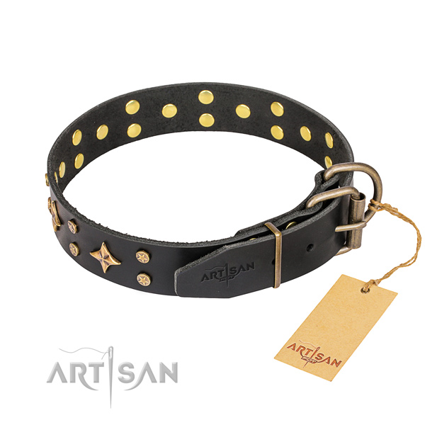 Walking adorned dog collar of strong full grain natural leather