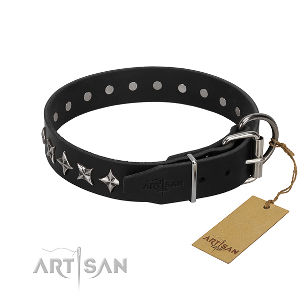 Fancy walking adorned dog collar of top quality full grain natural leather