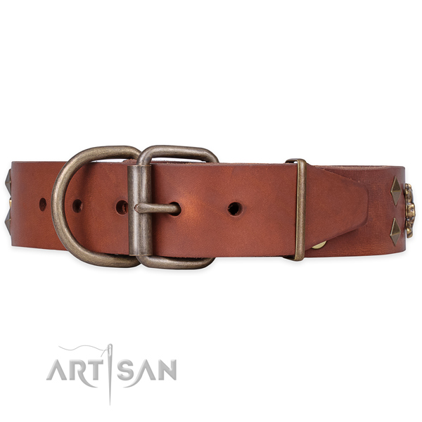 Comfy wearing embellished dog collar of quality genuine leather