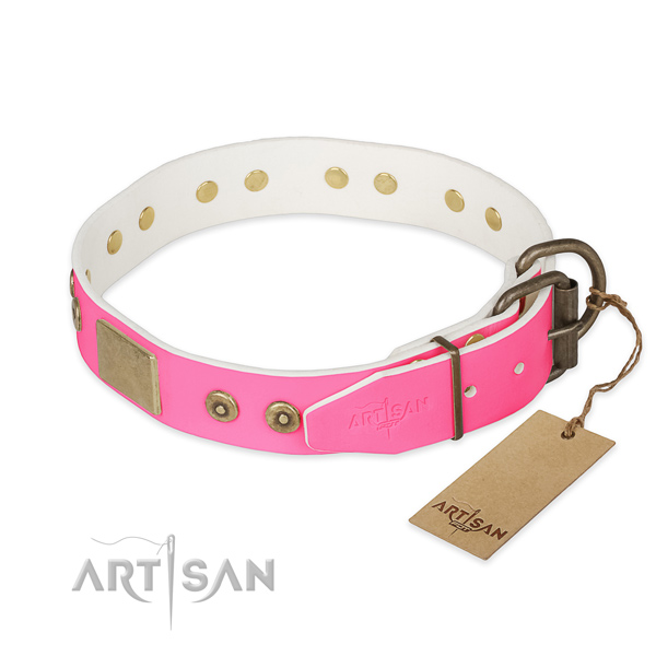 Corrosion resistant adornments on daily use dog collar