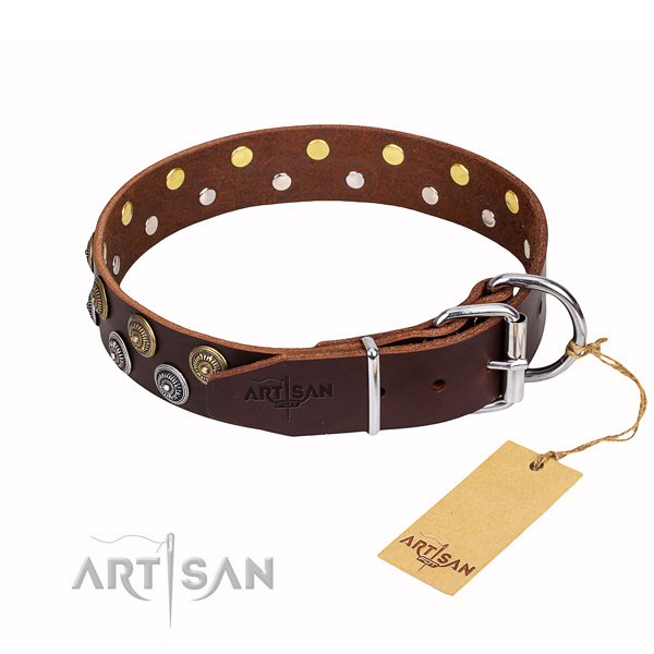 Walking decorated dog collar of fine quality full grain natural leather
