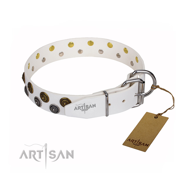 Comfortable wearing studded dog collar of strong full grain genuine leather