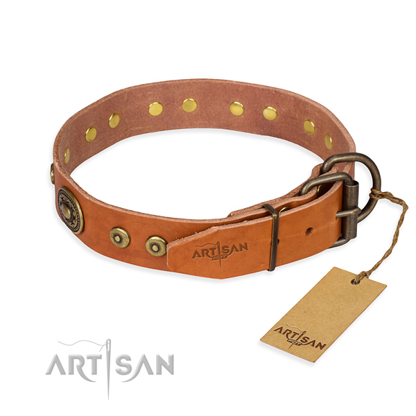 Full grain natural leather dog collar made of top rate material with corrosion resistant embellishments