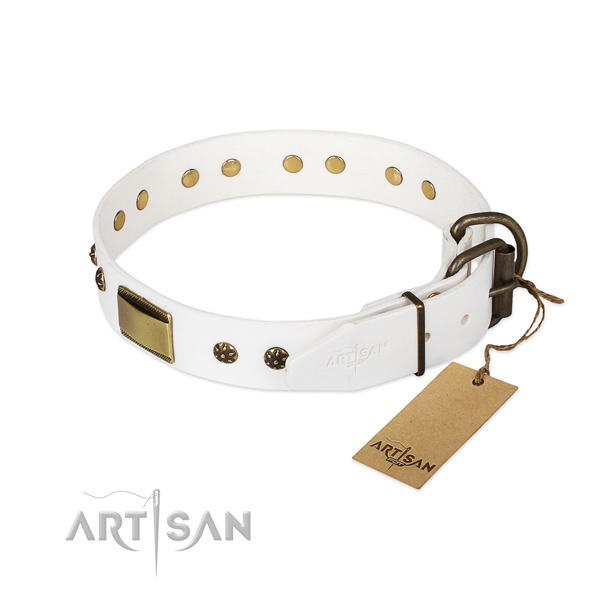 Full grain natural leather dog collar with rust-proof fittings and embellishments
