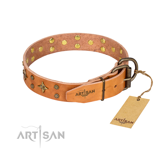Stylish walking adorned dog collar of top quality natural leather