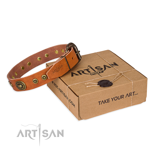 Leather dog collar made of quality material with corrosion resistant buckle