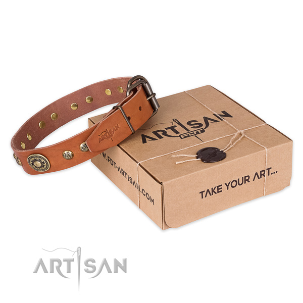 Reliable buckle on leather dog collar for stylish walking