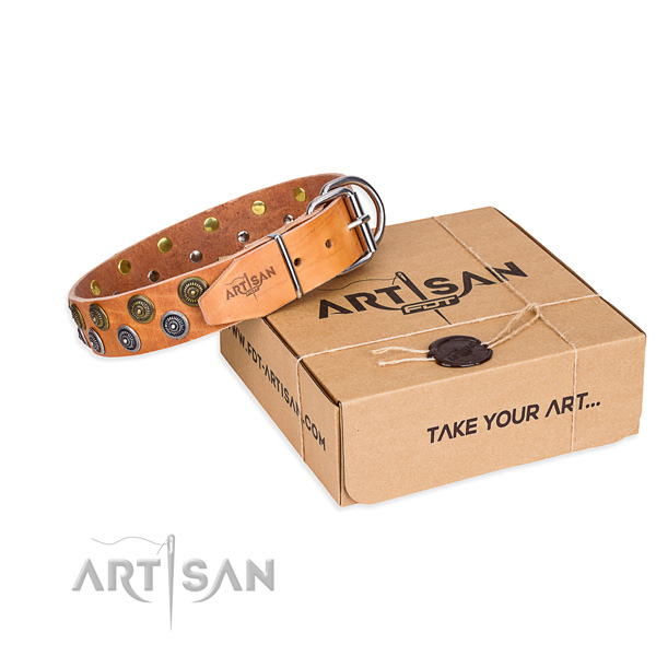 Basic training dog collar of top notch full grain leather with embellishments