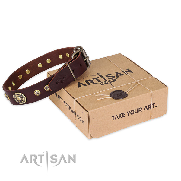 Rust resistant buckle on natural leather dog collar for everyday walking