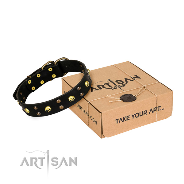 Daily use dog collar of strong natural leather with decorations