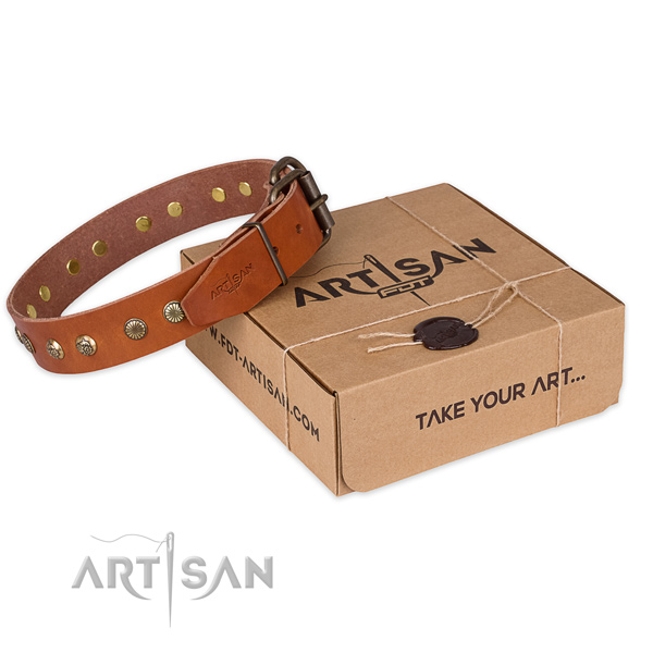 Durable hardware on leather collar for your attractive pet