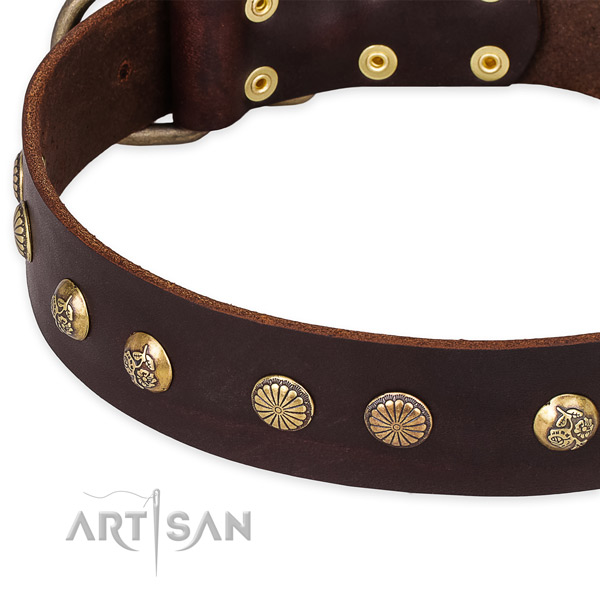 Full grain leather collar with rust resistant hardware for your handsome doggie