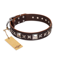 """Perfect Impression"" FDT Artisan Brown Leather Bullmastiff Collar with Silvery Square Studs"