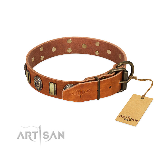 Reliable fittings on full grain natural leather collar for fancy walking your dog