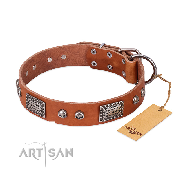 Easy adjustable genuine leather dog collar for stylish walking your doggie