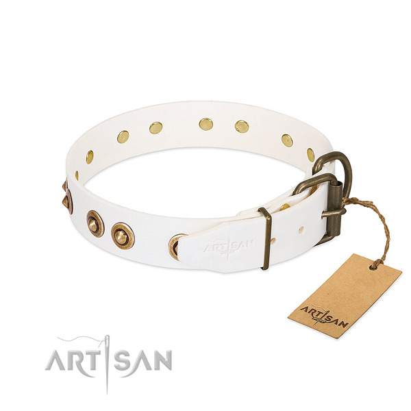 Corrosion resistant adornments on natural leather dog collar for your canine