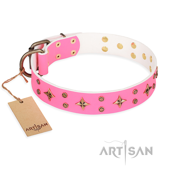 Fancy walking dog collar of durable natural leather with adornments