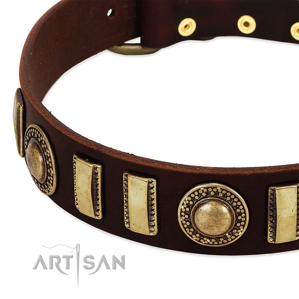 Best quality full grain natural leather dog collar with rust resistant fittings