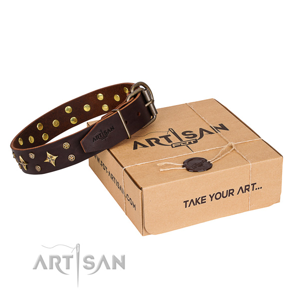 Stylish walking dog collar of fine quality full grain genuine leather with embellishments