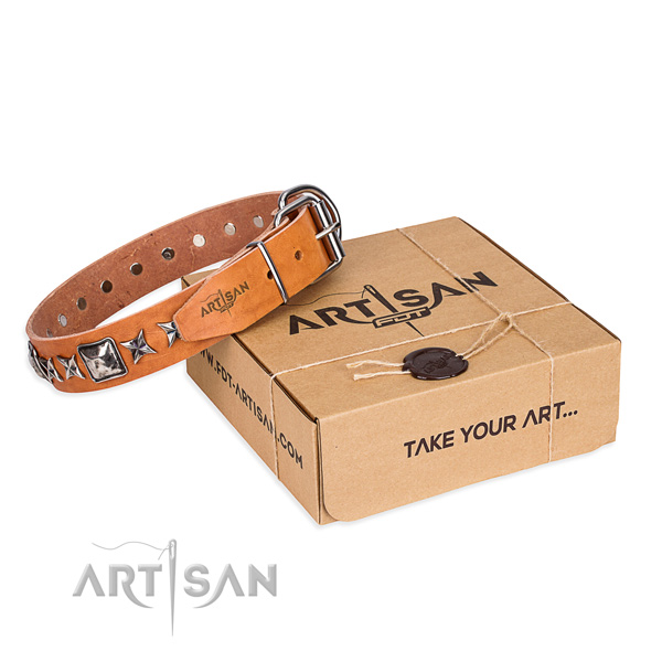 Stylish walking dog collar of quality natural leather with embellishments