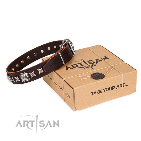 Walking dog collar of best quality full grain genuine leather with embellishments