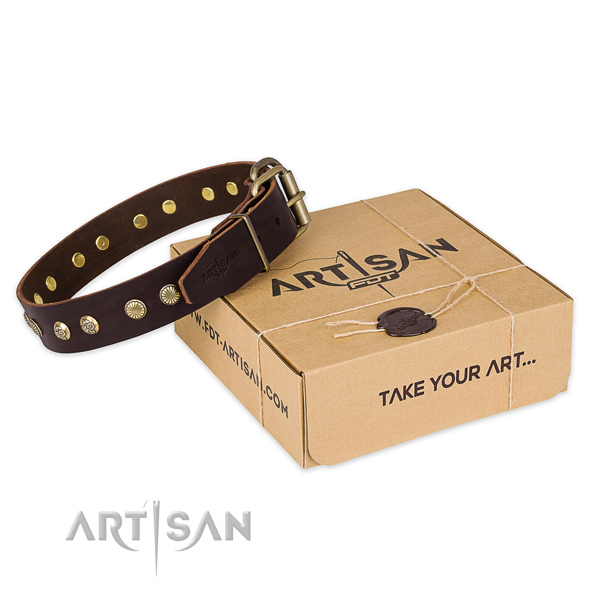 Strong fittings on natural genuine leather collar for your beautiful pet