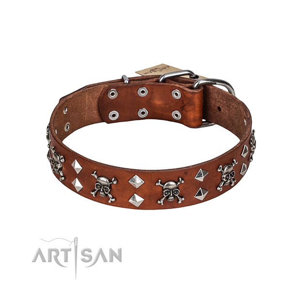 Easy wearing dog collar of quality leather with embellishments